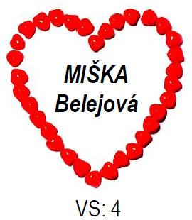 Srdce Miška